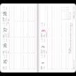 Fancy Flamingo - Secret Pocket Planner