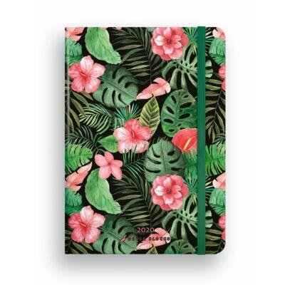 Exotic - SECRET Diary